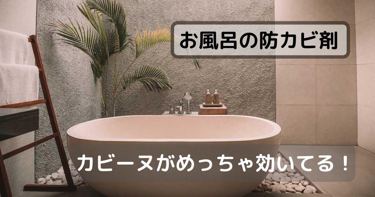 風呂場の防カビ剤カビーヌがめっちゃ効いてる